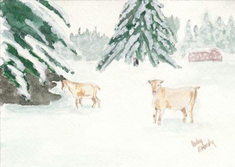 goats-winter